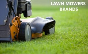 Best-Lawn-Mowers-Brands