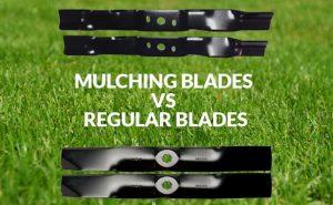 Mulching-Blades-vs-Regular-Blades