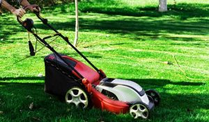 Best-Mulching-Lawn-Mowers